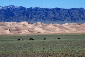 Gobi Çölü Kum Tepecikleri