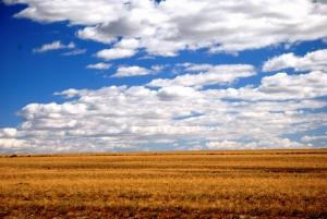 Gobi Çölü Manzara